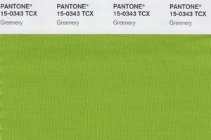 "This image released by Pantone shows a color swatch called ""greenery"", which has been named as the color of the year for 2017 by the Pantone Color Institute. The vibrant green with yellow undertones is an answer, of sorts, to bruising 2016, signaling a yearning to rejuvenate, and to reconnect to both nature and something larger than oneself, said Laurie Pressman, the institute's vice president. (Pantone via AP)"